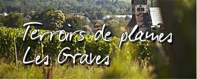 vignoble-Terroirs de plaines Les Graves