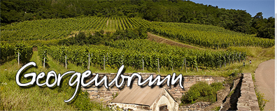 vignoble-Georgenbrunn
