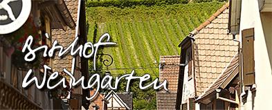 vignoble-Weingarten
