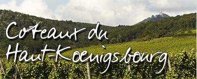 vignoble-haut koenigsbourg